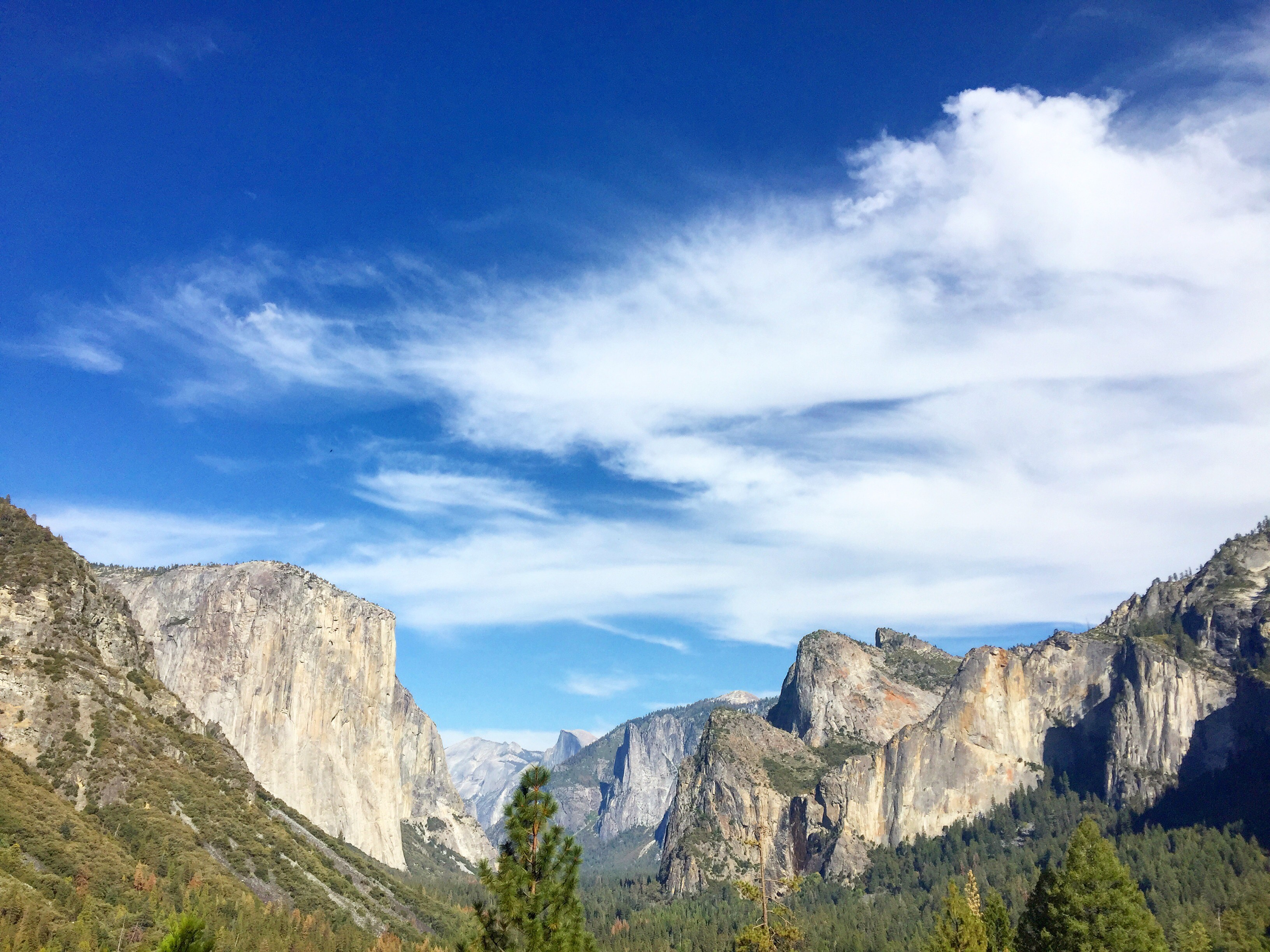 After the tunnel entrance at Yosemite, you are greeted by THIS.