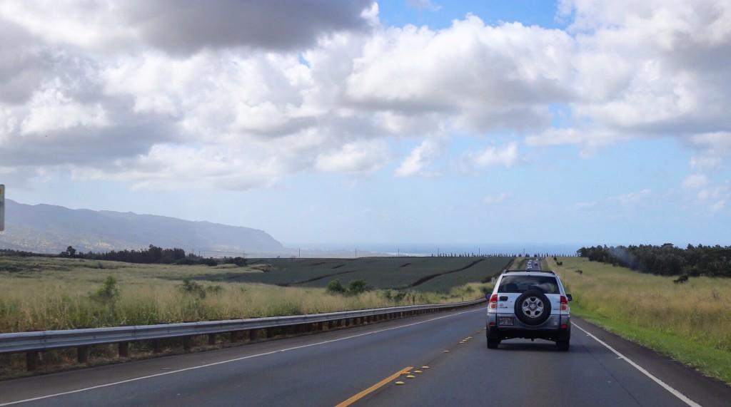 Blog- Hawaii
