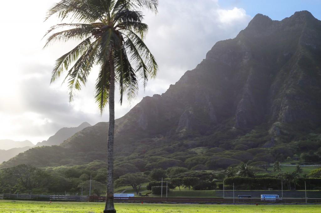 Blog- Hawaii 19