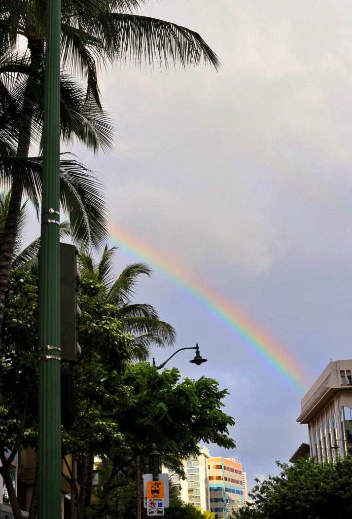 Blog- Hawaii 40