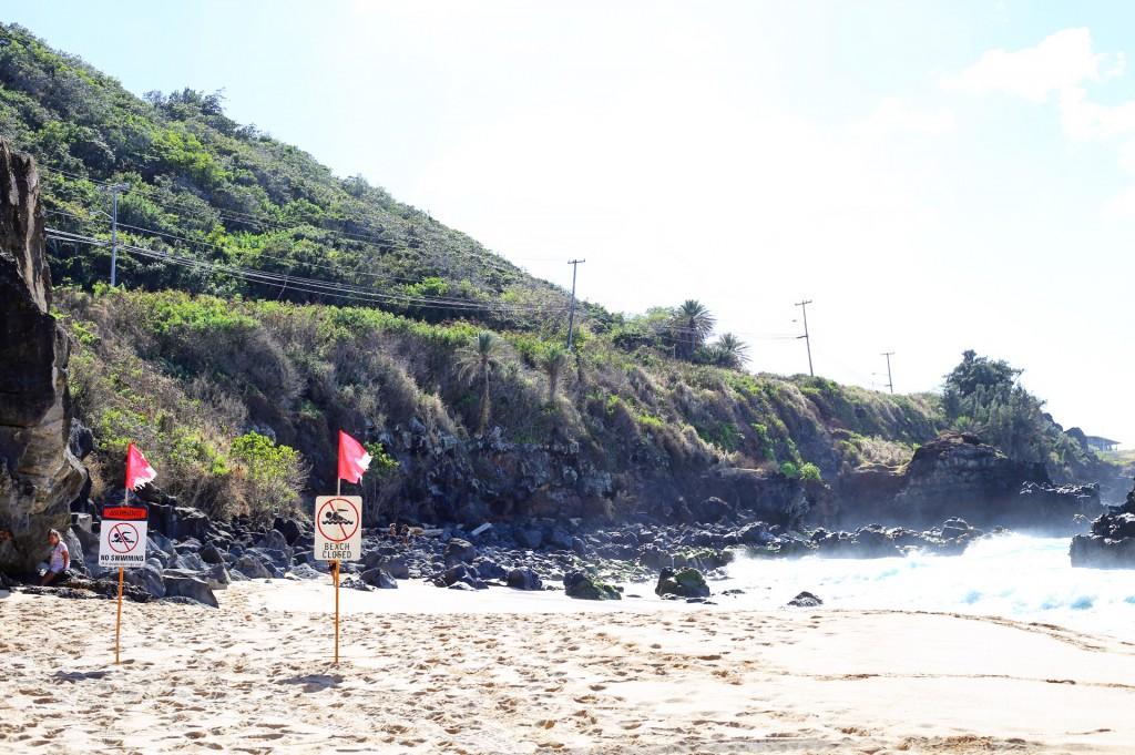 Blog- Hawaii 5