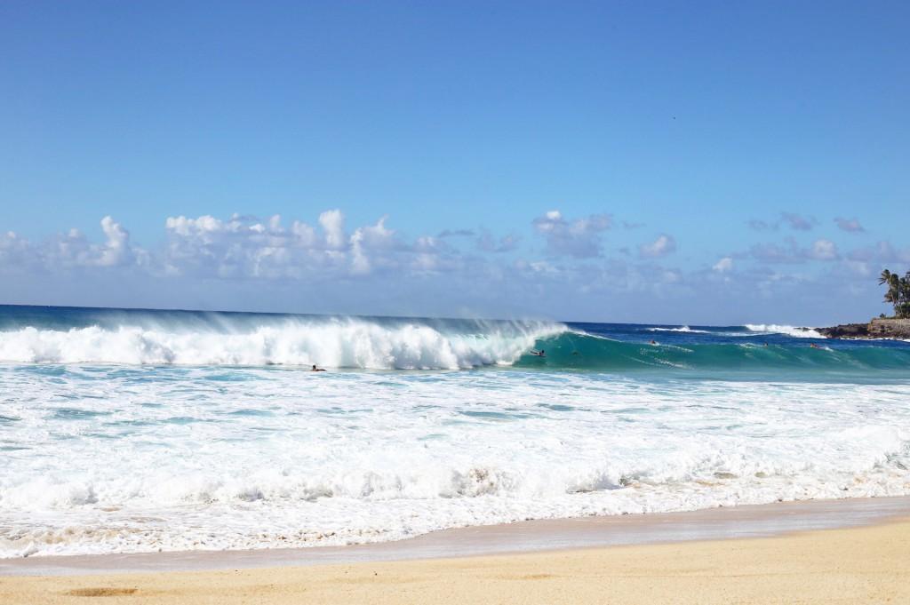 Blog- Hawaii 8