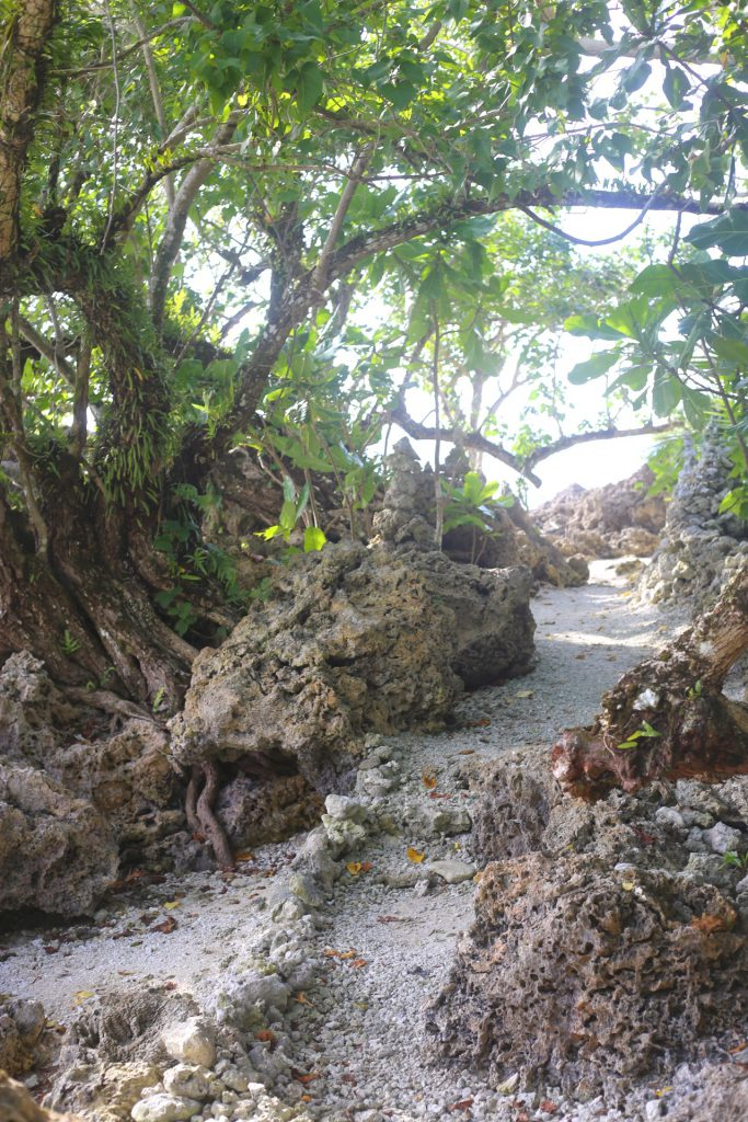 Follow along this coral-sand-rock path under the trees, along the beach.